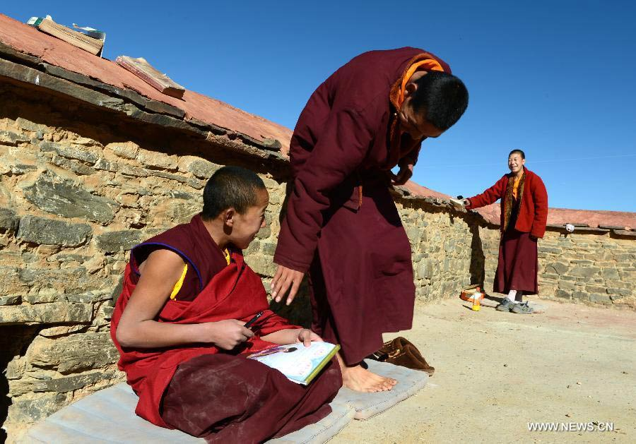 young monks in tibet, life of monks